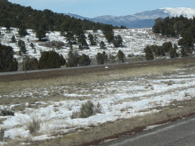 Snow on the ground just outside the car--not on distant mountains but all around us now!