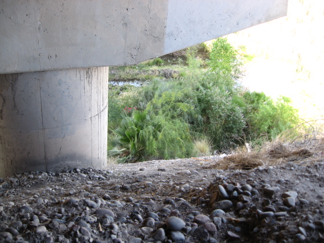 I climbed out of the riverbed below the bridge.  From the amount of trash on the ground, this is obviously the place where other people had climbed down into it.